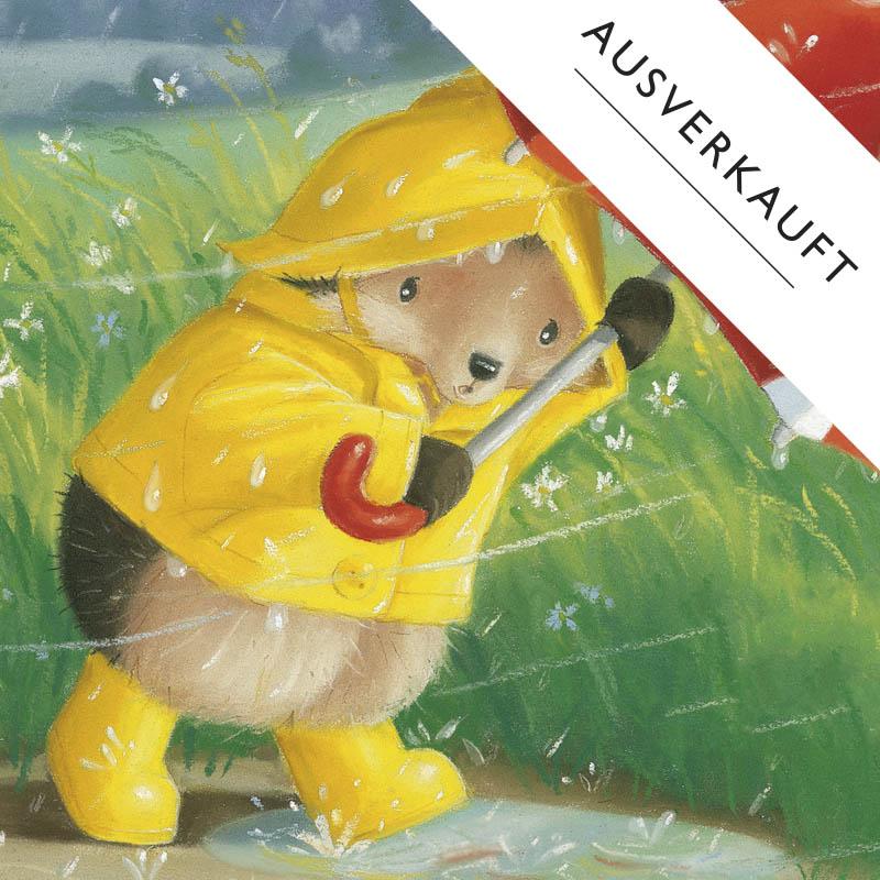 Der kleine Igel rettet seine Freunde (c) Tina Macnaughton, Brunnen Verlag GmbH